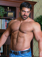 Vince ferelli gay videos